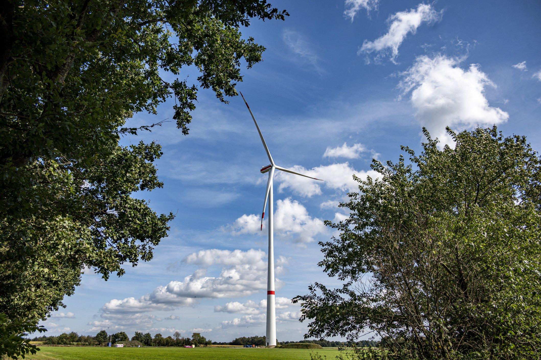 Erneuerbare Energiequellen aus der Heimat sind gut für grünen Wasserstoff